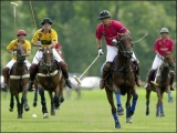 Argentina open polo championship